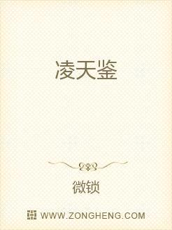 小说:凌天鉴,作者:微锁