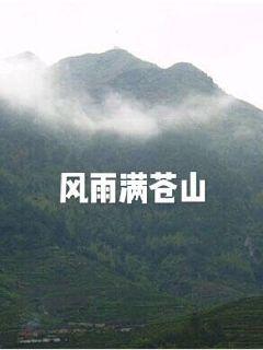 风雨满苍山