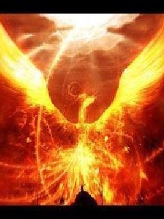 焚天道之烈焰焚天
