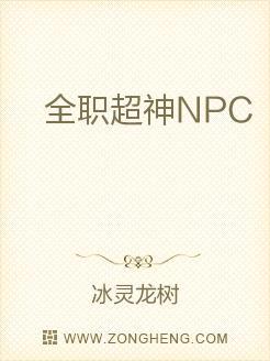 全职超神NPC