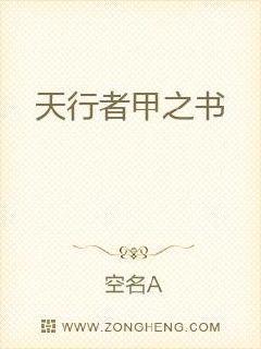 天行者甲之书