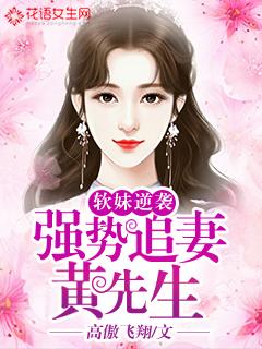 软妹逆袭:黄先生强势追妻