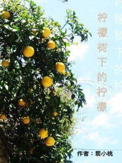 柠檬树下的柠檬
