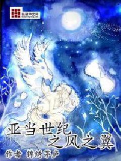 亚当世纪之凤之翼