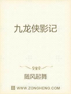 九龙侠影记