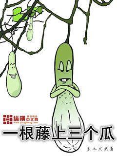 一根藤上三个瓜