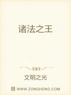小说:诸法之王,作者:文明之光