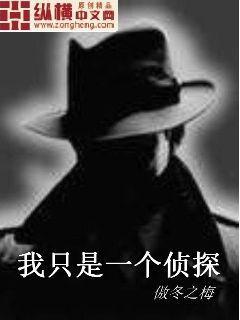 我只是一个侦探