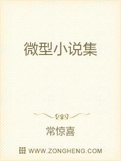 微型小说集