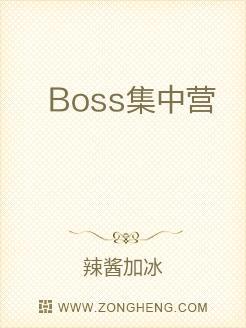 Boss集中营