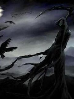 小说:魔王的首席门徒,作者:朽木于是