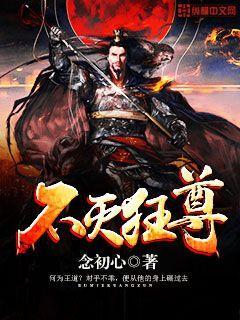 剑之灵小说