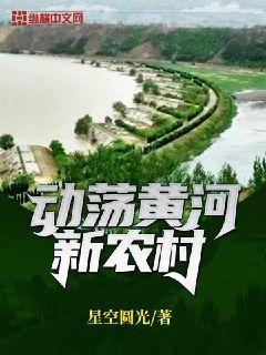 动荡黄河新农村