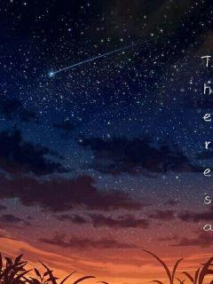 那个流星雨的夜晚