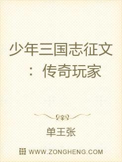 少年三国志征文:传奇玩家