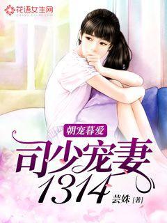 朝宠暮爱:司少宠妻1314