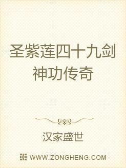 圣紫莲四十九剑神功传奇
