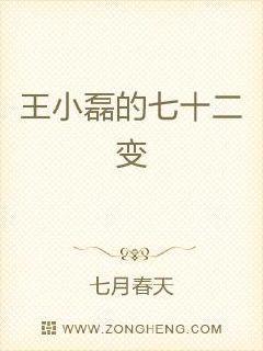 王小磊的七十二变