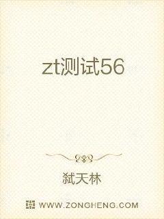 zt测试56